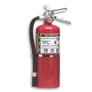 10 Pound Fire Extinguisher